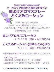 2017虫よけスプレー.jpg
