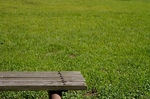 公園と芝生